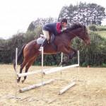 Peter Townsend show jumping