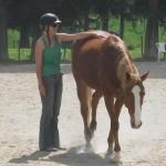 Trinity Valley Carla Townsend horse training