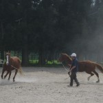 Trinity Valley Peter Townsend lunging two horses